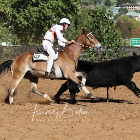 Clancy Martin from Merriwa Pony Club in Zone 7 pictured during the State Campdrafting events. Photo: Kristy Bullen