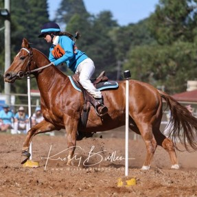 Darcy Heffernan from Toronto Pony Club represented Zone 24 in the State Sporting Championships, placing 3rd overall in the 15 & under 17 years Age group. Photo: Kristy Bullen