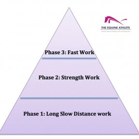 Fitness triangle